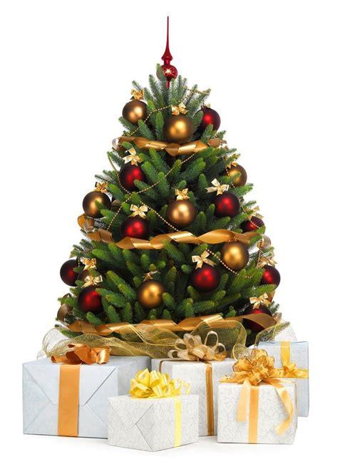 geschichten legenden und br 228 uche zur weihnachtszeit
