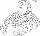 Scorpion Outline Tattoo Drawing Cat Lw Coverup Sean Lucky Getdrawings Deviantart sketch template