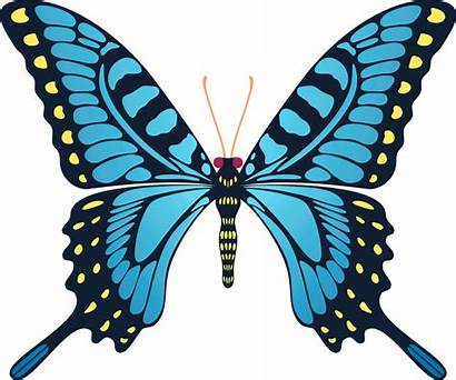 Butterfly Flying Animated Yellow Clipart Animation Gifs