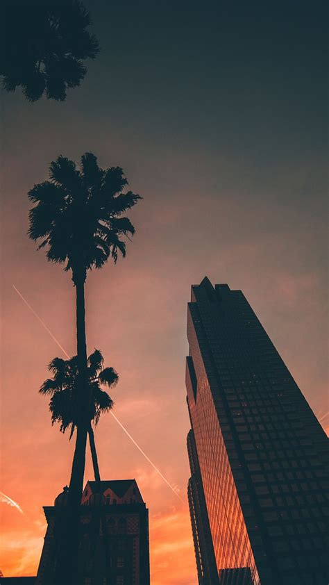 Wallpaper For by Miami Sunset Sky Buildings Iphone Wallpaper Iphone
