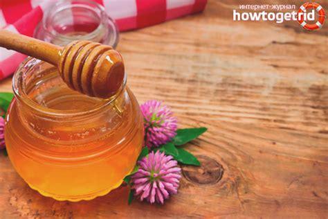 Āboliņa medus - noderīgas īpašības un kontrindikācijas