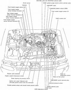 2001 Infiniti Qx4 Engine Diagram  U2022 Downloaddescargar Com