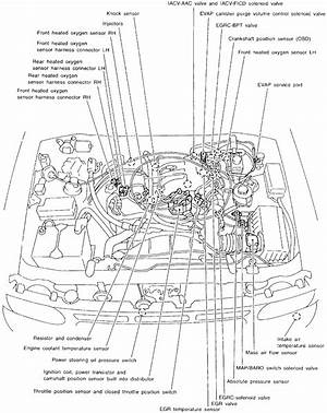 2011 Nissan Pathfinder Engine Diagram Florian Ferrier 41478 Enotecaombrerosse It