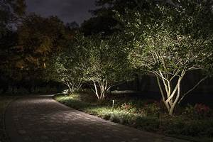lighting small trees siderar landscape lighting With outdoor accent lighting for trees