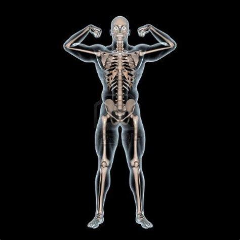Fakti par cilvēka ķermeni - Spoki