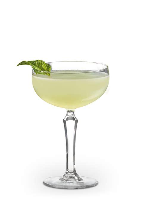 rum cocktail recipes  rum drinks  bacardi de