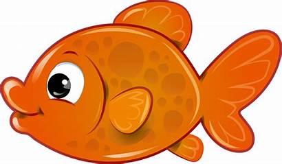Goldfish Fish Clipart Transparent Webstockreview