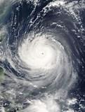 Taifun promo codes