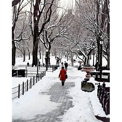 NYC Central Park SnowThe Winter's TalePinterest