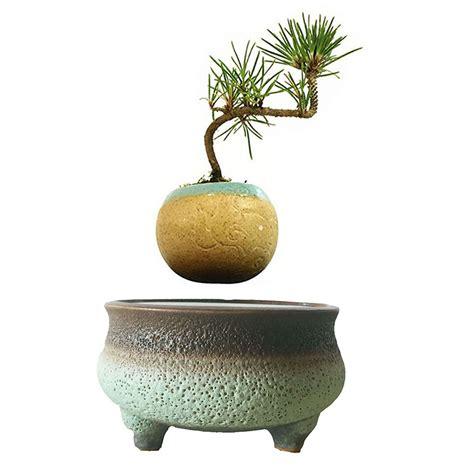 modern ceramic planter planters amazing modern ceramic planter modern indoor