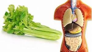 Just 1 Celery Stalk Contains These 7 Powerful Benefits