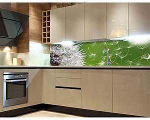 Küchenrückwand Glas Foto : k chenr ckwand folie l wenzahn 180 x 60 cm dimex ~ Michelbontemps.com Haus und Dekorationen