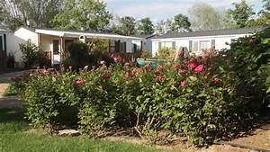 camping village garden paradiso in cavallino treporti With katzennetz balkon mit camping village garden paradiso cavallino