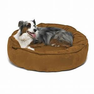 Larger dogs need special dog beds for Special dog beds