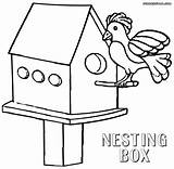 Coloring Box Pages Nest Nesting Bird Sheet Print sketch template