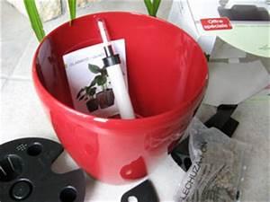 Bac Reserve D Eau : pot et bac r serve d 39 eau ~ Melissatoandfro.com Idées de Décoration