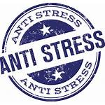Stress Siding Maintenance Remove