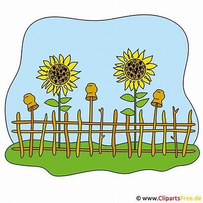 Garten Clipart Bild Kostenlos Cliparts Garden Gratis