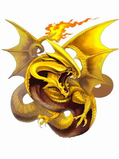 Dragon Transparent Mystic Wiz Rpg Quiz Wikia