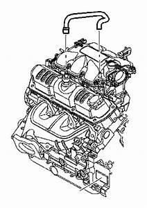 2008 Jeep Wrangler Hose  Pcv  Pcv Tube  Pcv Valve To Intake Manifold