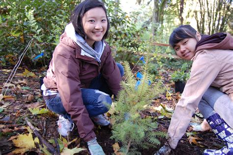 How To Make Volunteer Work Sound On A Resume by Volunteering Opportunities Around Puget Sound For Tweens And Parentmap