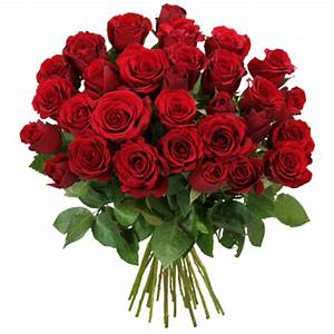 1 Rote Rose Bedeutung : rosen online bestellen rosenstr u e rosen im bund ~ Whattoseeinmadrid.com Haus und Dekorationen