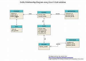 Entity Relationship Diagram - Erd
