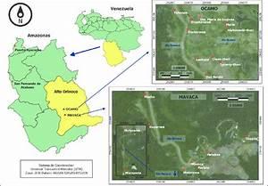 Ubicaci U00f3n Relativa De Las Comunidades De Ocamo Y Mavaca  Municipio Alto