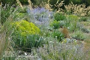 Beet Im Garten : sch ne staudenkombinationen f r das beet im garten plantura ~ Lizthompson.info Haus und Dekorationen
