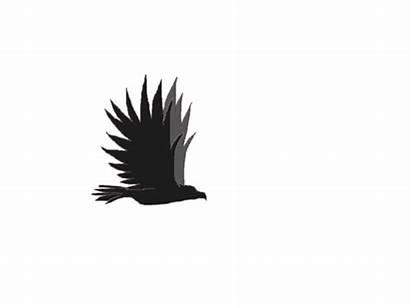 Eagle Flying Animation Simple Deviantart Favourites