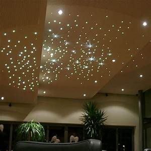Optic 6 Led Grow Light Fiber Optic Star Ceiling Kit 5w Twinkle Fiber Optic