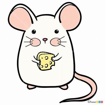 Kawaii Mouse Draw Pretty Drawdoo Step Webmaster
