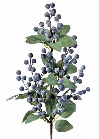 Blueberries Artificial Blueberry Arrangements Afloral Christmas Bouquets