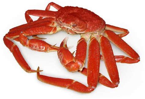 cuisine et vins de recettes découvrez le crabe des neiges par le chef du restaurant tandem