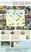 社區地圖﹕給區議員的地圖之﹕沒界限自種地圖 - 20151004 - 副刊 - 每日明報 - 明報新聞網