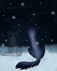 Warrior Cat Crying | www.imgkid.com - The Image Kid Has It!