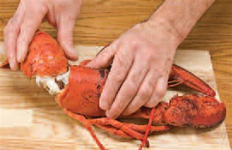 cuisiner du homard comment décortiquer le homard
