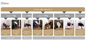Trappe Pour Chat : portes pour chiens chati res battants de rechange ~ Dode.kayakingforconservation.com Idées de Décoration