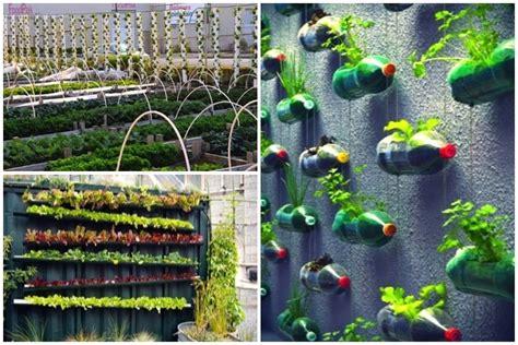 Diy Vertical Garden Ideas That Actually Look