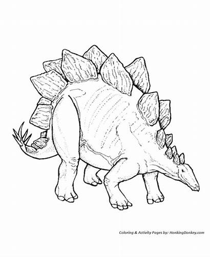Stegosaurus Coloring Dinosaur Pages Dinosaurs Printable Sheets