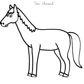 apprendre  dessiner  cheval