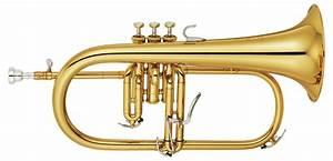 Brass Instrument Family   www.pixshark.com - Images ...