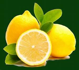 Wie Lagert Man Zitronen : gefrorene zitronen als wundermittel bewusst leben ~ Buech-reservation.com Haus und Dekorationen