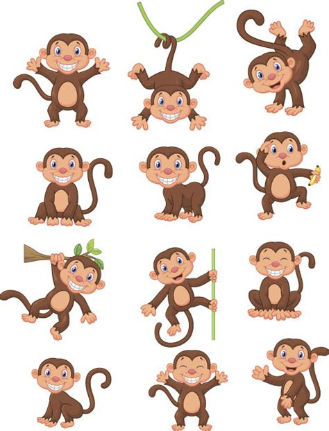 monkey vector 01 free monkey creative vector material 01 vector animal
