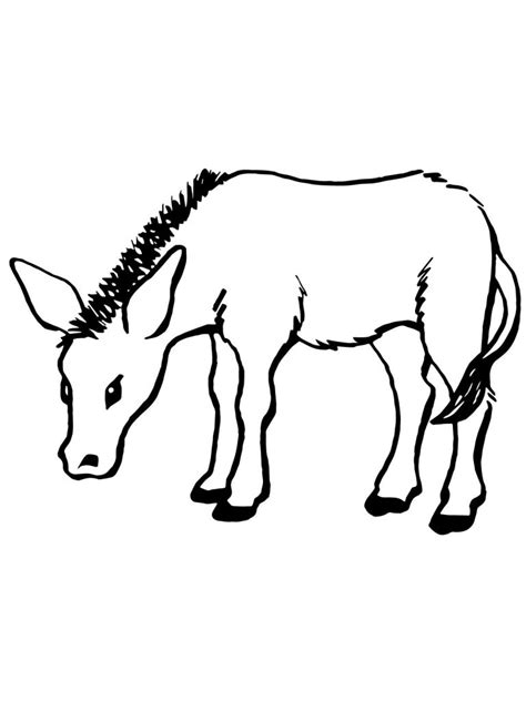 printable donkey coloring pages  kids