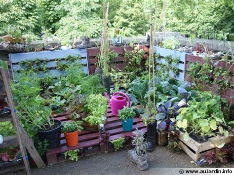 comment cuisiner les navets 10 idées de récupération au jardin