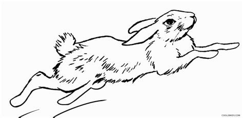 printable rabbit coloring pages  kids coolbkids