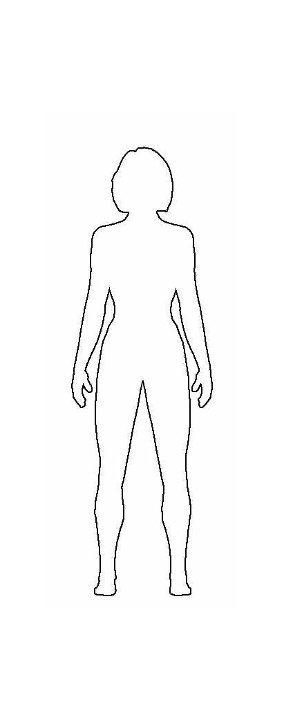 Outline Drawing Clipart Female Template Human Sketch
