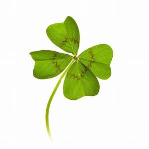 Symbole Für Glück : ergebnis f r ein freigestelltes kleeblatt mit 4 bl ttern vierbl ttrige kleebl tter sind ein ~ Udekor.club Haus und Dekorationen