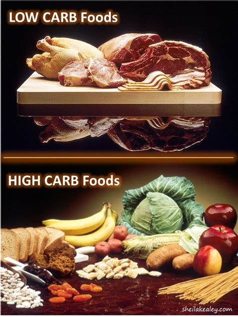 15 Delightful High Fat Low Carb Diet - Best Product Reviews